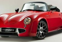 PGO / 2013 PGO Cevennes: 1.6 Liter Inline 4 with 184 horsepower. 0 to 60 mph in 6.8 seconds with a top speed of 140 mph.