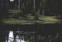 Raktas: Gamta•