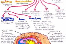 Biología