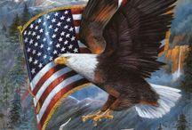 America / by Stacey Hansen