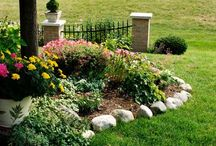 Landscaping / by Jayy Renee'