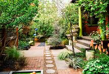Small Backyards / by Renata Iwaszko
