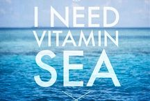 i need the sea