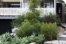 jardin - accès maison