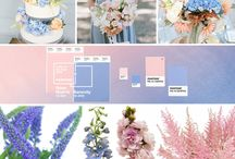 Rose Quartz and Serenity Blue- 2016 Colors of the Year!