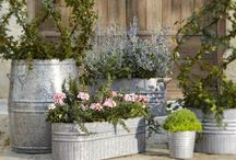 Container Gardens  my style