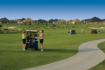 Active Adults / There are over 100 clubs and activities at Robson Ranch to enjoy and keep ones mind and body active.