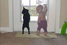 niños con animales