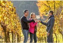 In Franciacorta Wine Trekking e Sparkling Picnic con prodotti locali  fra vigneti e boschi