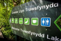 Trawsfynydd Lake / Activities at Trawsfynydd Lake include fishing, walking and cycling for families and individuals. There's also a cafe, toilets, a shop and Wi-Fi.