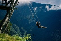 Swings ....