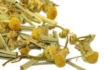 TeaCakes All Natural Herbal Tea Infusions / Natural Tisane Herbal Infusions
