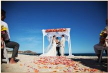 happily ever after - blog. / Check out all the latest bog postings featuring the work of our incredible wedding team here at Hilton Los Cabos. Our blog is perfect for destination wedding inspiration, trips, tricks and ideas. http://ow.ly/k0sFK