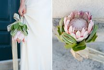 marys wedding posie / bouquets containing proteas