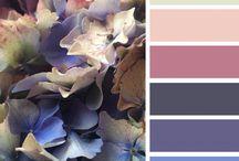 Design colour families