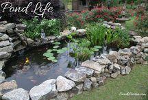 Gardening - Landscaping - Garden Ponds