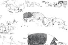 Benedict's Pigs