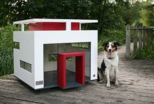 Style Dog House & Products / by Enrique Alrovi