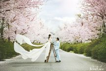 Jeju Island Prewedding photograhpy (23) / Minewedding Minewedding provides the best quality and Full Korean photography services (Pre Wedding, Family, Friends, Portrait) to you! website: http://www.minewedding.com Contact : mine@minewedding.com Tel : 82-2-415-3204