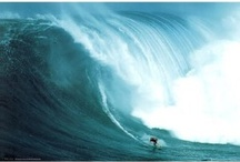 Surfing Posters / by Gordon Brown