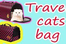 Travel cats bag - MaiPM.net