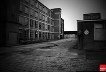 N.V. Lederfabriek Oisterwijk / Vóór de komst van de grote fabrieken, waren in Oisterwijk tientallen kleine leerlooiersbedrijfjes die op ambachtelijke wijze huiden tot leer verwerkten. In 1916 werd de N.V. Lederfabriek Oisterwijk opgericht. Dit veroorzaakte uiteindelijke de ondergang van de kleine ambachtelijke looierijen. In 1932 ontving de Lederfabriek het predicaat Koninklijk.