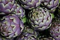 purple & green / by Ann Kilzer