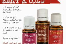 Young Living Essential Oils / by Lisa McFarlin