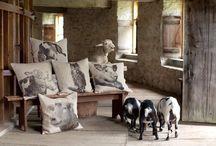 Homesteader living room