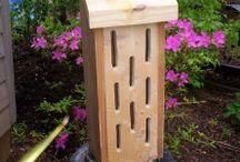 bird / butterfly house