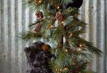 Natale ❤️
