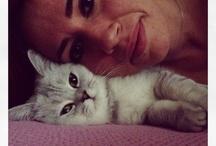 Jeff / My little sweet cat