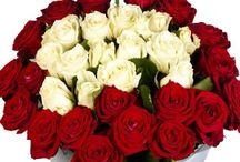 Send Flowes to Gurgaon Online On Time Delivery from Zoganto / Flowers in Gurgaon online from renowned florist Zoganto offers plenty of flowers varieties to send to Gurgaon through same day home delivery for your all occasions.