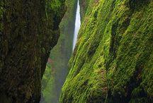Oregon & surroundings
