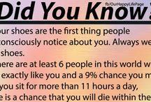 fun fact?