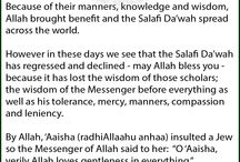 Shaykh Rabee' - Let them call us Mumayyi'