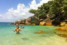 Fitzroy Island tours and things to do