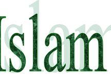 Niepoprawny: Islam – kwintesencja ideologicznego gówna