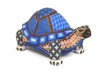 David Hernandez Turtle