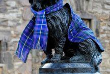 Bonnie Scotland / Proud to be Scottish