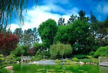 gardens in LA