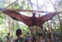 huge animal's