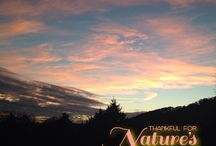 TN Sky