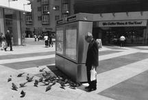 Street Photography / public