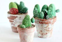 kaktus af sten