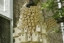 Homes and Feeders for Feathered Friends / Birdhouses out of the box!