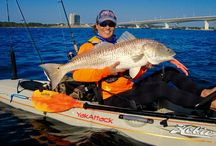 Kayak Fishing HUB Blogs / Kayak fishing and paddling blogs from around the globe