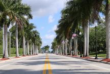 Tree-lined Streets in PBC / Here is a collection of locations that have trees planted along different streets in Palm Beach County, FL.