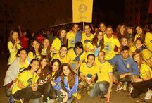 Euphoria Music Fest. San Pedro 2014. Zamora