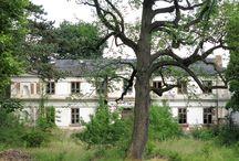 Biała Wielka - Pałac